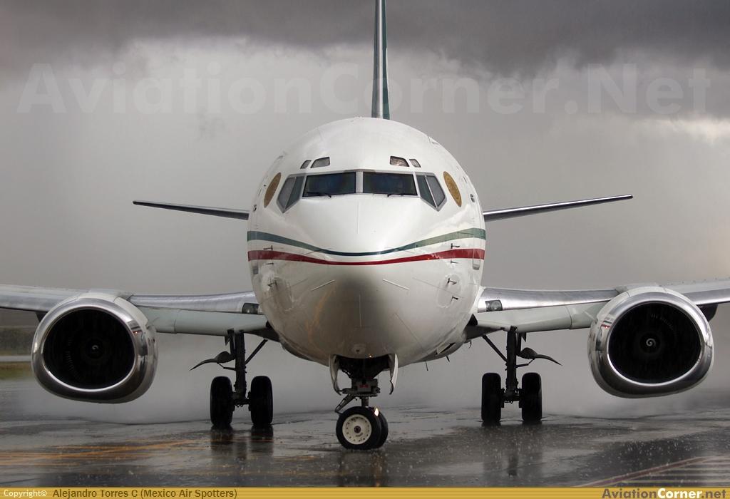 Boeing 737 Fuerza Aérea Mexicana Avc_00359200