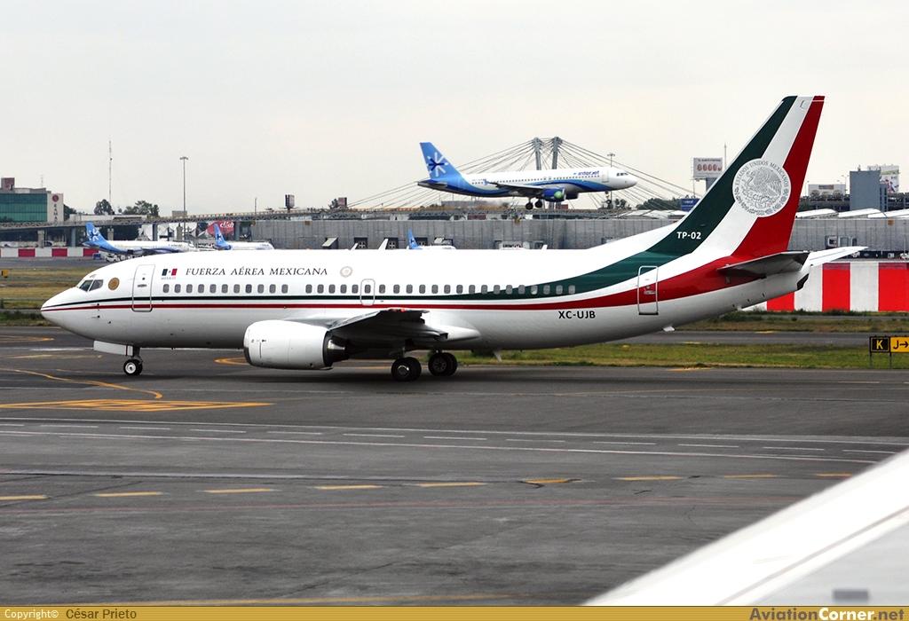 Boeing 737 Fuerza Aérea Mexicana Avc_00356875