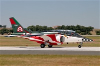 ©Sandro Magalhães -  www.portugalspotters.org. Click to see full size photo