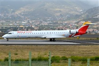 �Daniel Santos Batista - Canary Islands Spotting. Click to see full size photo