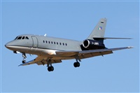 �Cele -Noisy Spotters. Click to see full size photo