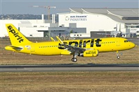 ©Leandro Hdez - Canary Islands Spotting. Click to see full size photo