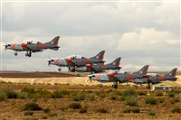 ©Bernardo Puente Fernández-Gran Canaria Spotters - AIRE.org. Click to see full size photo