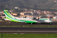 Javier de la Cruz - CANARY ISLANDS SPOTTING. Haz click para ampliar