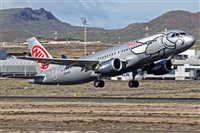 �Ioan Alonso GIl - Canary Islands Spotting. Click to see full size photo