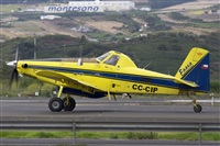 �Saimon J Rodriguez   -   Canary Islands Spotting. Click to see full size photo