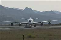 ©ruben canary islands spotting. Click to see full size photo