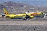 �Javier de la Cruz - CANARY ISLANDS SPOTTING. Haz click para ampliar