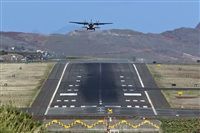 ©Rui Alves - Madeira Spotters. Click to see full size photo