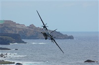 �Chalo Canary Islands Spotting. Click to see full size photo