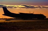 ©Javier de la Cruz - CANARY ISLANDS SPOTTING. Click to see full size photo