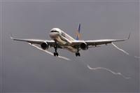©Juan Cruz Menéndez-Gran Canaria Spotters. Click to see full size photo