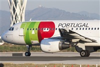 ©Miguel Alia - Noisy Spotters. Click to see full size photo