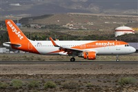 ©Alfonso Solís - Asociación Canary Islands Spotting. Click to see full size photo