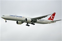 ©Naoto Goto - South American Spotters Asu-Py. Click to see full size photo