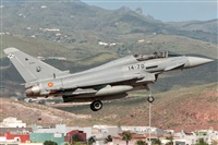 ©Ángel Ortiz-Gran Canaria Spotters. Click to see full size photo