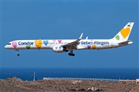 ©Cándida Hidalgo - Gran Canaria Spotters. Click to see full size photo
