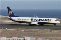�Alfonso Sol�s - Asociaci�n Canary Islands Spotting. Click to see full-size photo