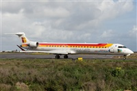 ©David Manuel Tobarra Ruiz - Spotters Murcia. Click to see full size photo