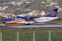 Alfonso Sols - Asociacin Canary Islands Spotting. Haz click para ampliar