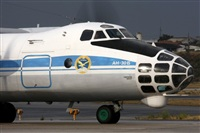 �Rui Alves- www.portugalspotters.org. Click to see full size photo