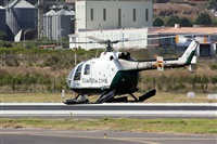 ©Ayoze Santana Mendez - Canary Islands Spotting. Click to see full size photo