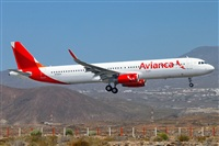 �Daniel Villa Le�n - Asociaci�n Canary Islands Spotting. Click to see full size photo