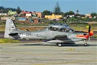 ©Alejandro Bethencourt (Canary Islands Spotting). Click to see full size photo