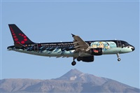 ©Juanma Bango (Canary Islands Spotting). Click to see full size photo