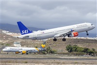 ©Natalia Sobrino Alonso - Canary Islands Spotting. Click to see full size photo