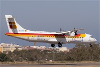 �Fernando Mart�nez Garc�a -Iberian Spotter-. Click to see full size photo