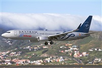 ©Sascha Kilders Díaz - Canary Islands Spotting. Click to see full size photo