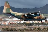 �Adolfo Bento - Gran Canaria Spotters. Click to see full size photo