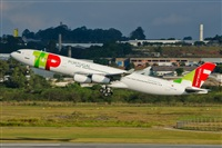 �Naoto Goto - South American Spotters Asu-Py. Click to see full size photo