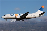 ©Daniel Villa León - Asociación Canary Islands Spotting. Click to see full size photo