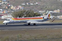 �Javier de la Cruz - CANARY ISLANDS SPOTTING. Click to see full size photo