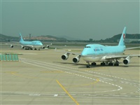 ©Pablo Gonzalez -IBERIAN SPOTTERS. Click to see full size photo