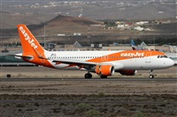 ©Alfonso Solís - Asociación Canary Islands Spotting. Click to see full-size photo